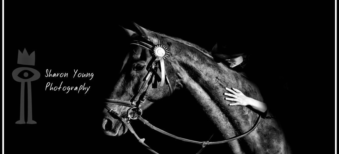 Sharon Young Photography